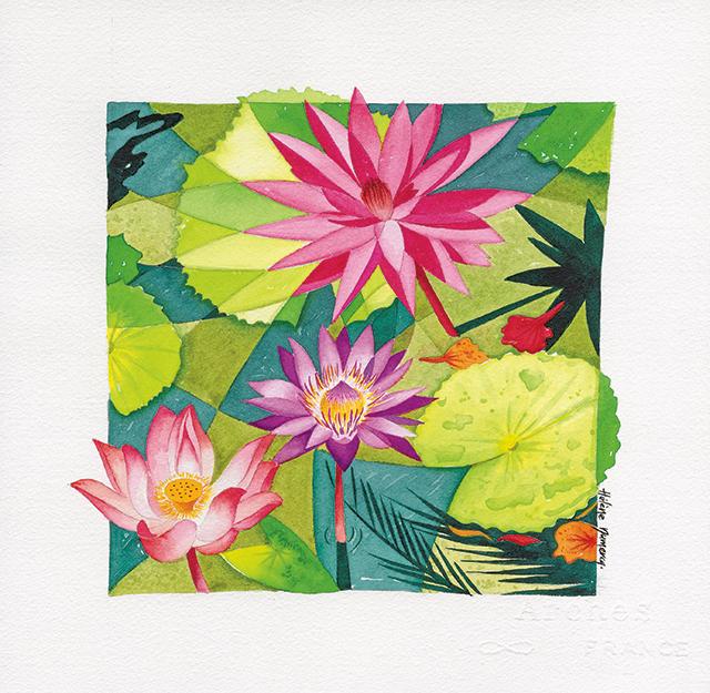 Fleurs-de-lotus-web